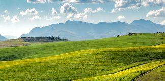 Globale Klimaerwärmung: Kosten der Umweltbelastung / Pixabay